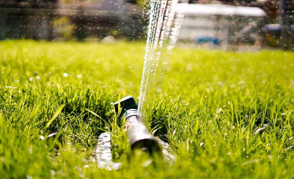 Sprinkler | Goodwin Landscape Naples, Florida